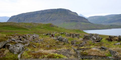 Þyrilsnes